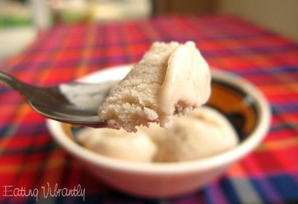 A spoonful of coconut vanilla ice cream